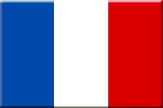 Logo_franse_vlag_(2)